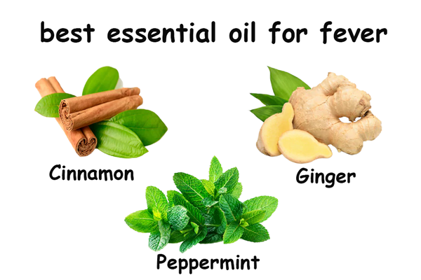 essential oils for fever